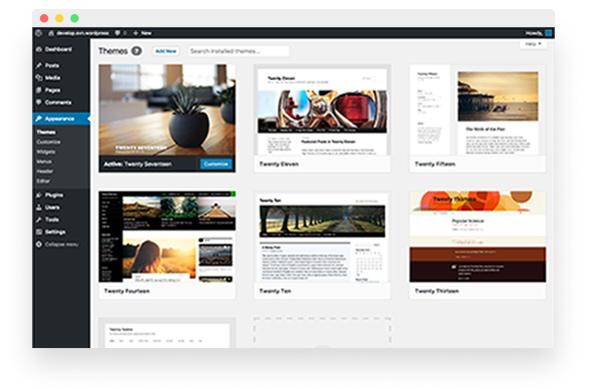 feature-photo-wp-premium-support-theme-maintaenance
